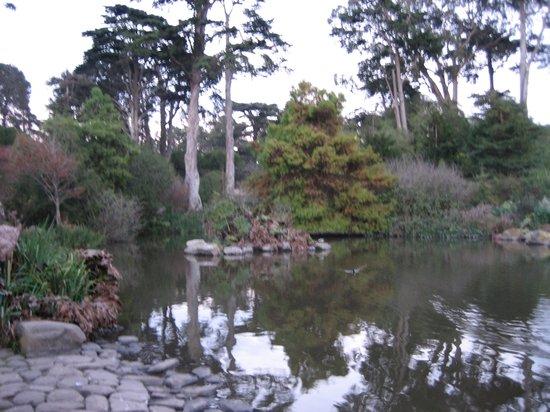 San Francisco Botanical Garden: Garden 2