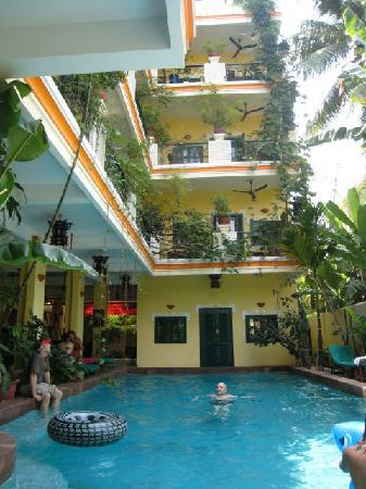 Golden Banana Bed & Breakfast & Superior Hotel: Golden Banana's Pool