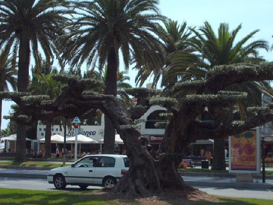 4R Playa Park : salou
