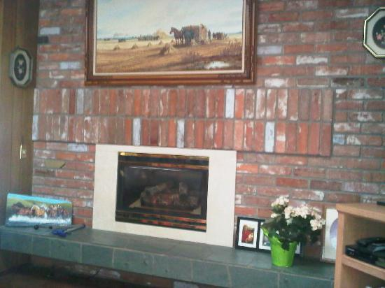Hilltop Ranch Bed & Breakfast: Fireplace in the main living room