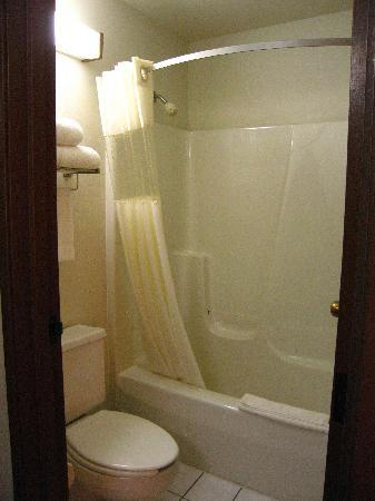 Super 8 Delavan Near Lake Geneva: Bathroom