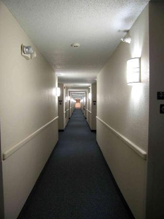 Motel 6 Springfield: Hallway - very nice!