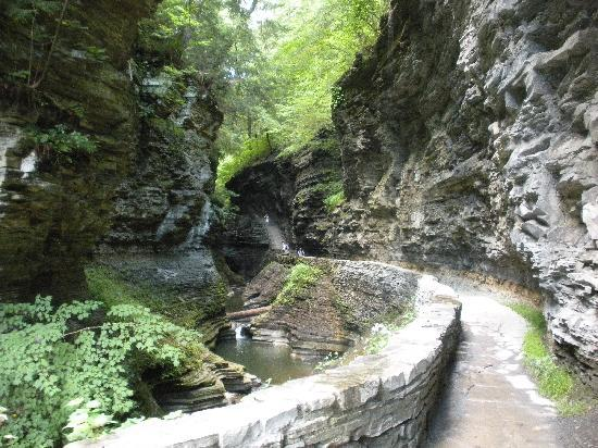 Watkins Glen State Park: The Gorge