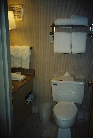 Radisson Hotel Philadelphia Northeast: Bathroom