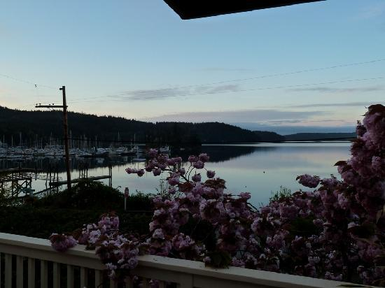 Kingfish Inn: view from Room 4