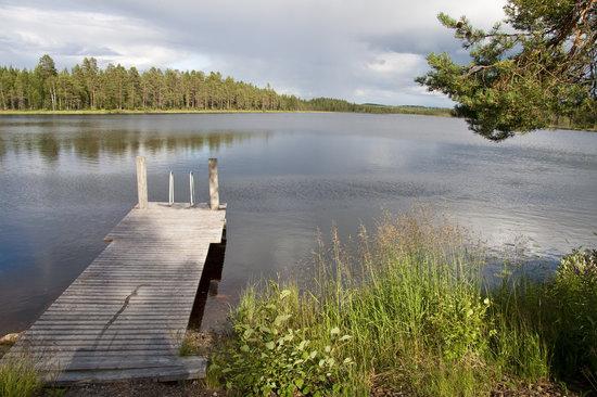 Kuhmo, Finlândia: Summer in Wild Taiga