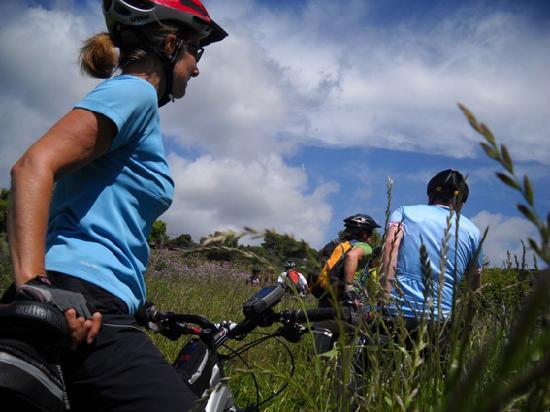 GalluraBikePoint - Biketours, Bikerental and Bikeholidays in Sardinia