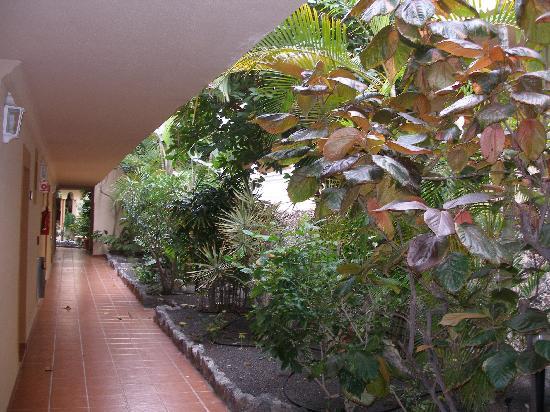 Elba Lucia Sport & Suite Hotel: corridor