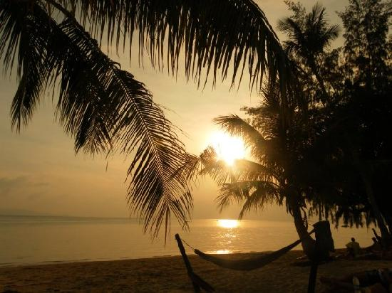 Phangan Beach Resort: The Beach