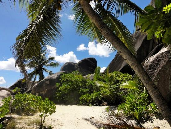 Anse Source D'Argent: La Digue