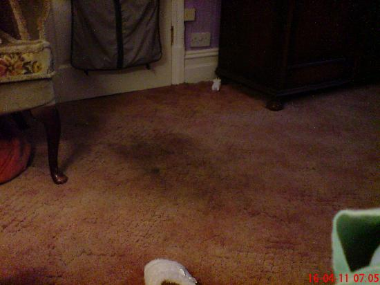 Hayes Guest House: Carpet not that clean