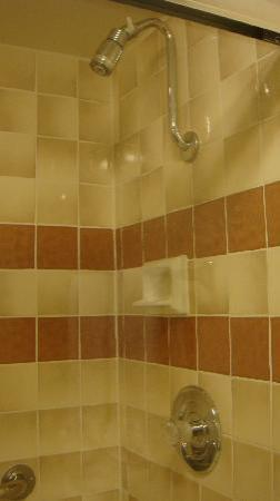 Best Western Plus Monterey Inn: Very clean shower, spotless too!