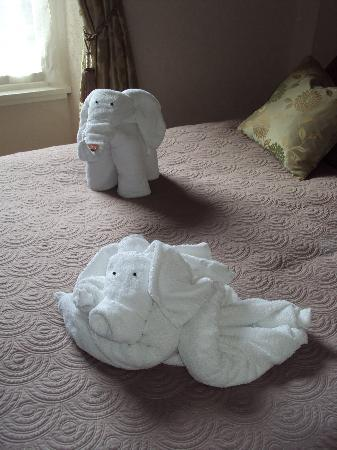 The Cartwheel Guest House: Elephant and doggie towels!