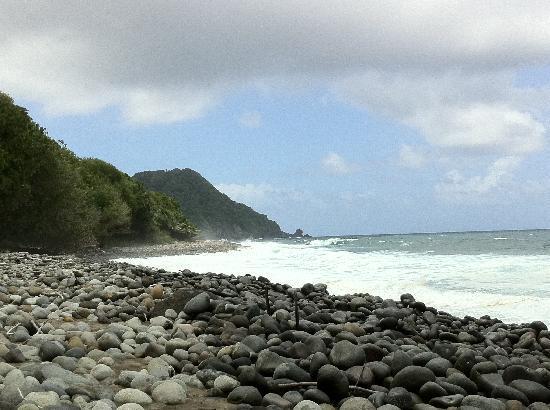 Jungle Bay, Dominica: der strand