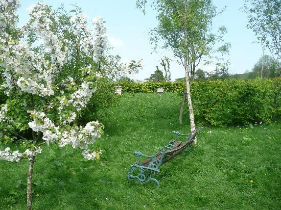 Ty-Mynydd: The garden