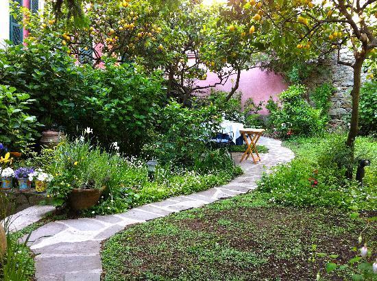 Il Giardino Incantato Bed and Breakfast : the garden