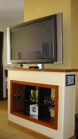 Hyatt Place Fremont/Silicon Valley: Huge TV in the middle of the room