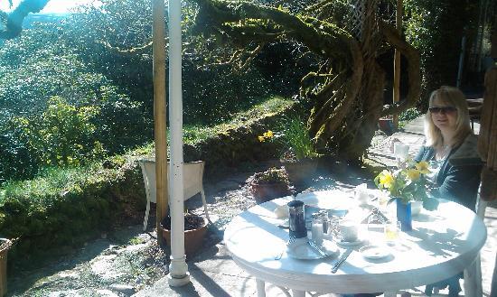 Hazelwood House: The sun shine on the beautiful valley