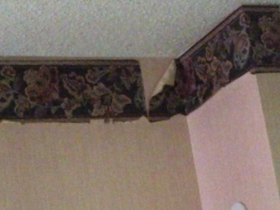 Teakwood Inn - Las Cruces: peeling wallpaper