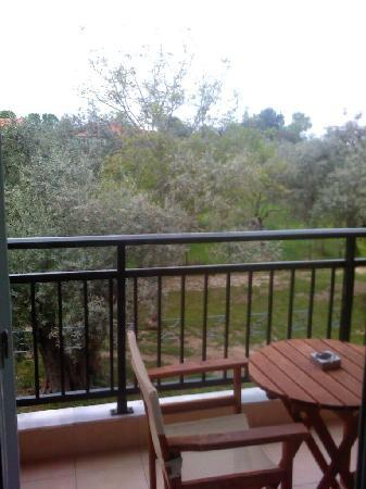 Studios Zafira: The Zafira room balcony - basically they built the complex in an olive tree orchard