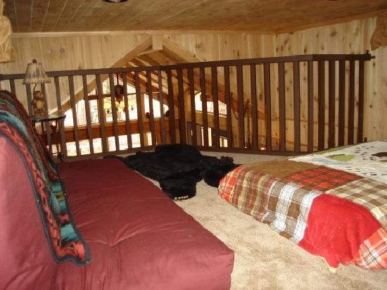 Cedar Pines Resort: Loft