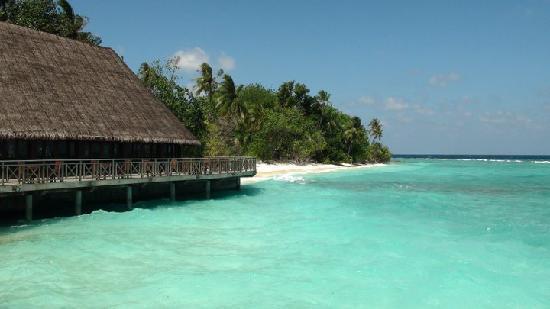 Bandos Maldives: Crystl clear