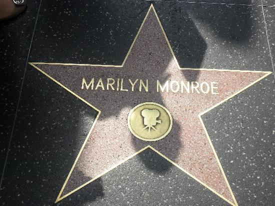 la stella di marilyn monroe   foto di hollywood los