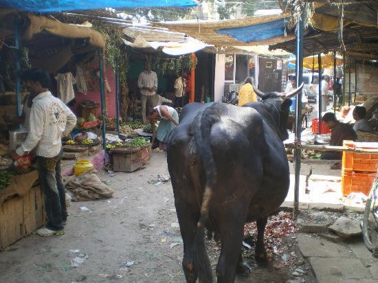 Varanasi, Inde : マーケット