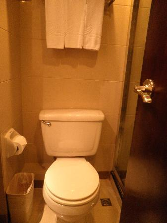 Victoria Hotel: 2nd room toilet