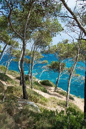 IBEROSTAR Club Cala Barca: Côte rocheuse mondrago