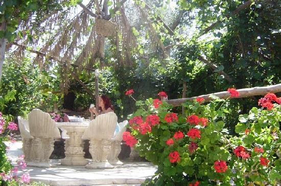 Casa Mazzola B&B: The Garden of Casa Mazzola Sorrento