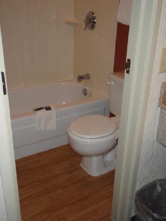 ريد رووف إن هيلتون هيد آيلاند: Tiny bathroom