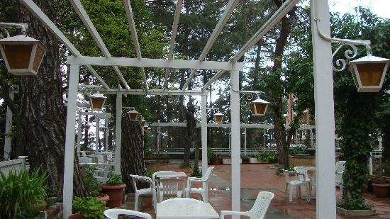 The garden of Forest Park Hotel