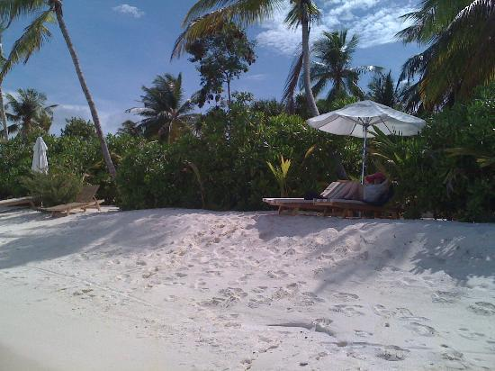 Maafushivaru: Just outside our beach villa - PERFECT!