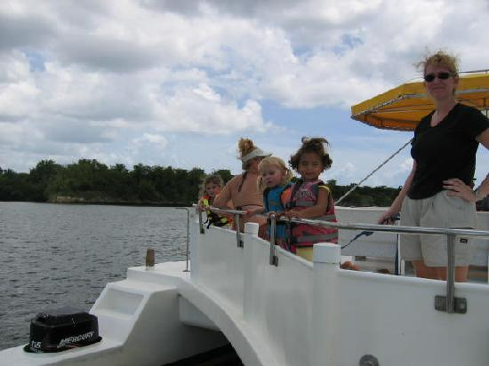 Sunny Island Tours