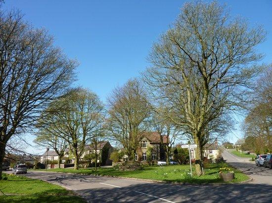 Ashleigh B&B: Litton Village Centre, with Daffodils