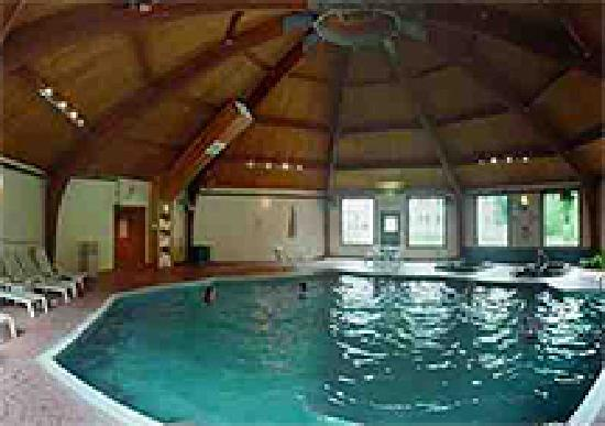 Snowy Owl Inn: Indoor Pool