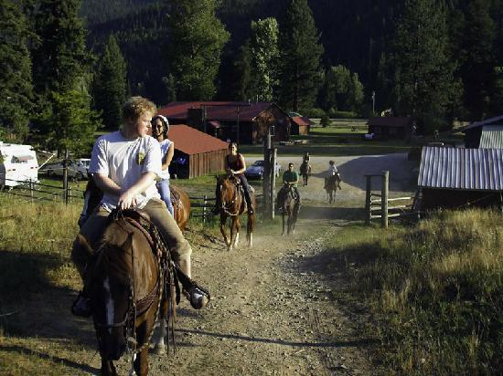 Black Diamond Guest Ranch : Beginner Friendly Horses With Instruction