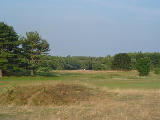 Kennebunkport, ME: As an old lnks course, there is a lot of fescue and mounding.