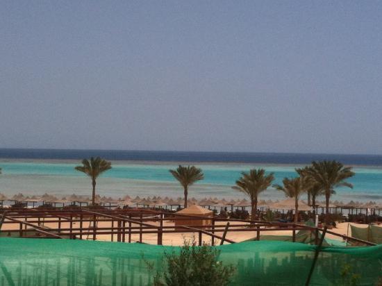 Marsa Alam, Egypt: mare mare...
