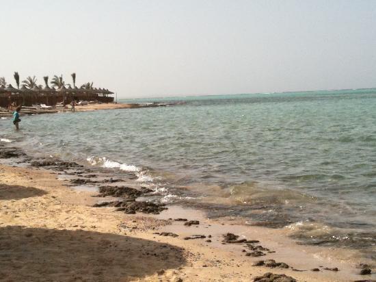 Marsa Alam, Egypt: mare,mare,mare,,,,