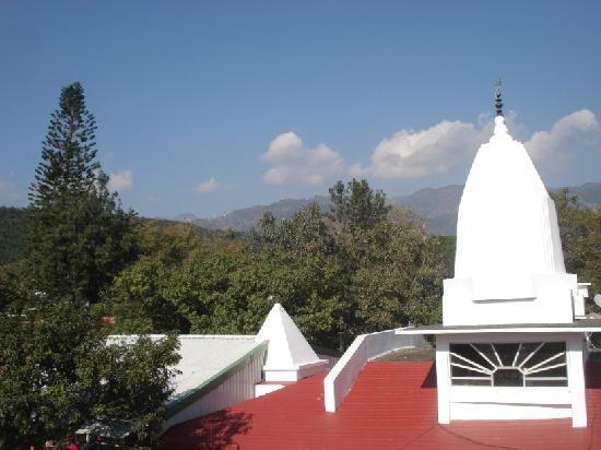 Paradise Homestay Kashmir : Paradise Homestay