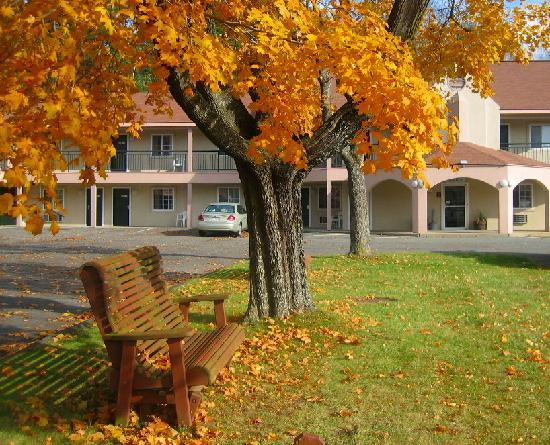 Howard Johnson Express Inn - Lenox: Scenic Park Area