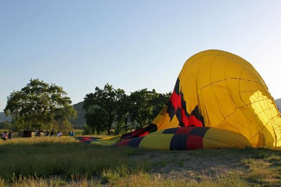 Crash Landing - Picture of Balloons Above the Valley, Napa