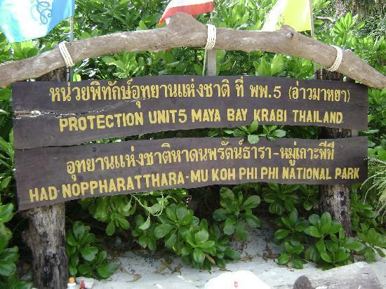 "Inn Patong Beach Hotel Phuket: Ausflug zu Maya Bay, Drehort von "" The Beach"""