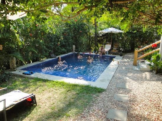 Blue Surf Sanctuary : the pool