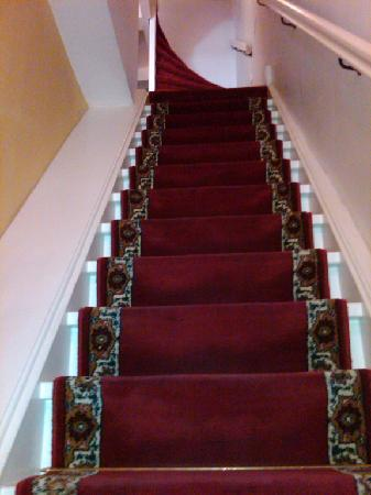 Maes B & B: a portion of the staircase
