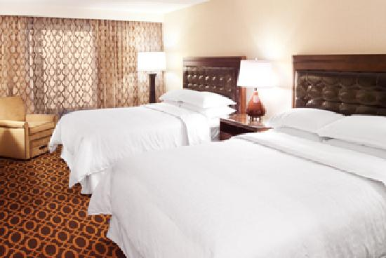 Sheraton Ann Arbor Hotel: Queen Guest Room