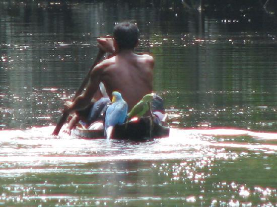 Tucupita, Venezuela: Warao Indian