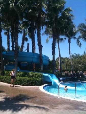 The Adventure Pool